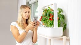 Estonian smartpots startup Click & Grow raises $11 million in investment from IKEA and others